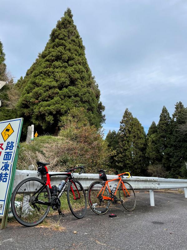 オーバーホール -487走目